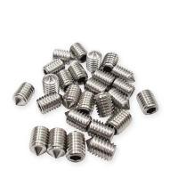 20pcs per pack SUS set screw with tip