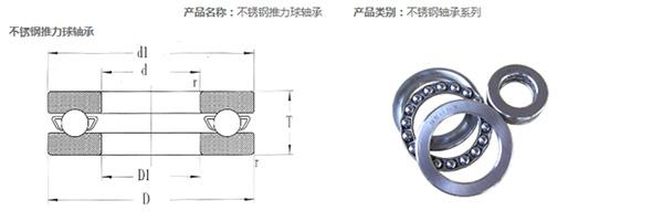 Stainless Steel Thrust Bearing