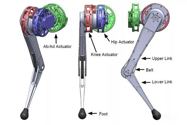 robot dog motor